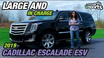2019 Cadillac Escalade - Large and in Charge